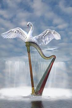 Magic harp  by Angel Jesus De la Fuente