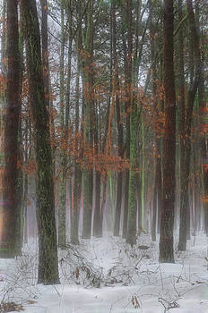 Magic in the Fog 1 by Beth Sawickie