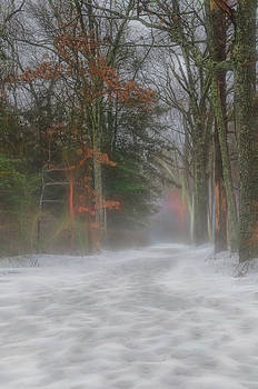 Magic in the Fog 3 by Beth Sawickie