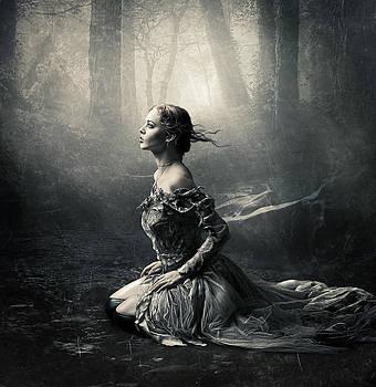 Magic Light by Cindy Grundsten