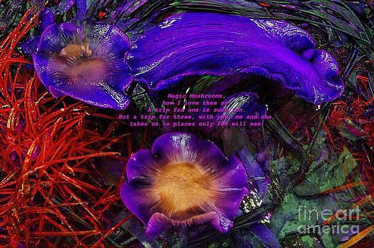 Magic Mushrooms by Blair Stuart