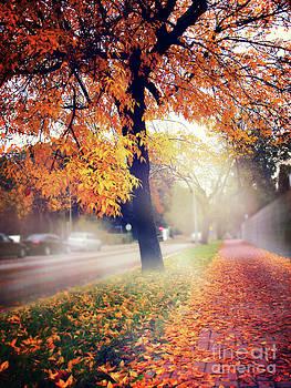 Magic of autumn by Monika Pachecka