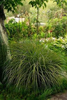Matt Create - Magic Summer Garden