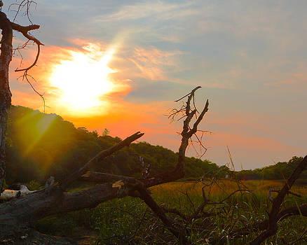 Magic Sunset by George  Leininger