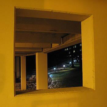 Sandy Tolman - Magic Window - Trompe L