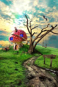 Magical mushroom by Dimitar Vatev