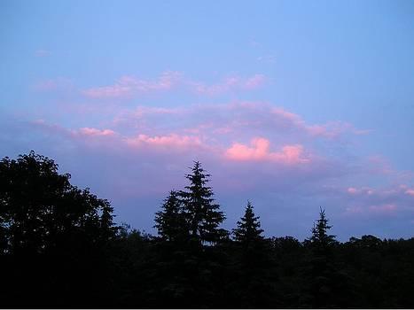 Magnificent Twilight by Liz Lare