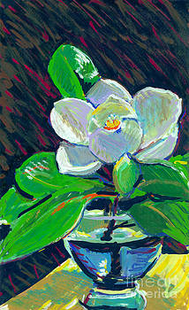 Candace Lovely - Magnolia in Water