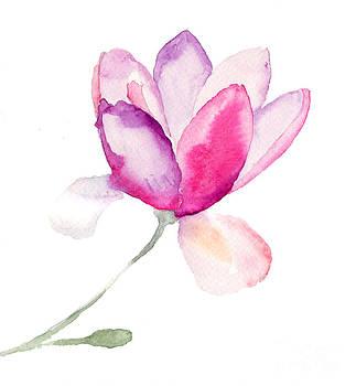 Magnolia by Regina Jershova
