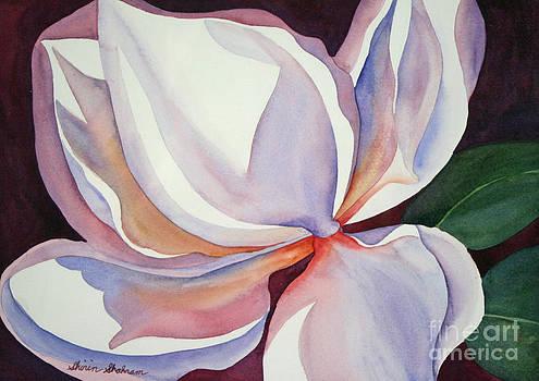 Shirin Shahram Badie - Magnolia