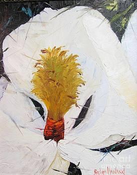 Magnolia UP Close by Barbara Haviland