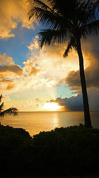 Mai Tai Sunset by Rick Lewis