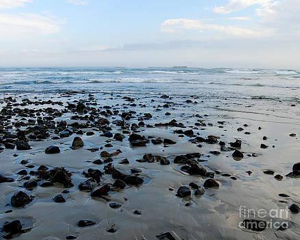 Maine Beach Landscape by Eunice Miller