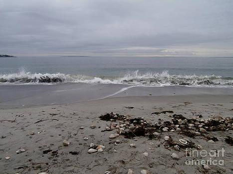 Maine Coastline  by Eunice Miller