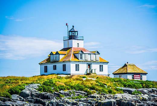 Maine Egg Island Lighthouse and Bald Eagle by Jason Brow