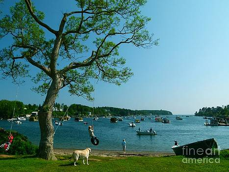 Christine Stack - Maine Summer Day at Mackerel Cove