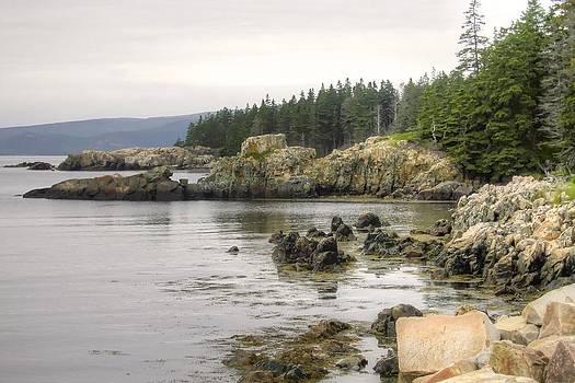 Maine's Beautiful Rocky Shore by Denyse Duhaime