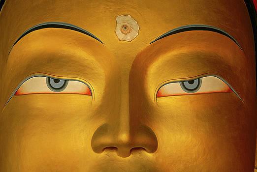 Colin Monteath - Maitreya Close Up Of Buddha