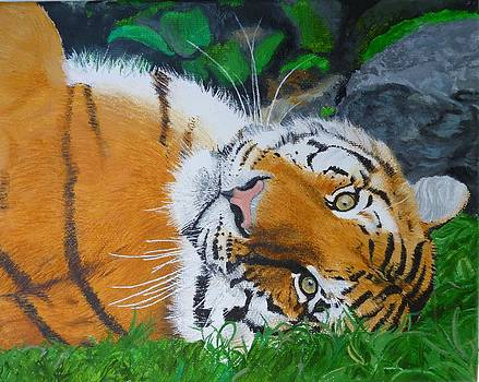 Majestic Bangel Tiger Cub Original Oil Painting by Pigatopia by Shannon Ivins