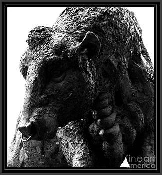 Malcolm Suttle - Majestic Beast
