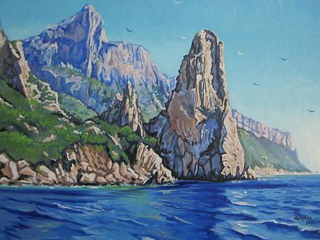 Majestic Paradise by Andrei Attila Mezei