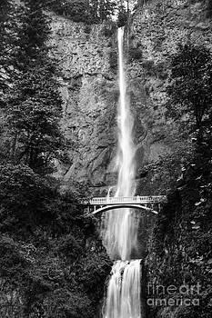 Oscar Gutierrez - Majestic Waterfall