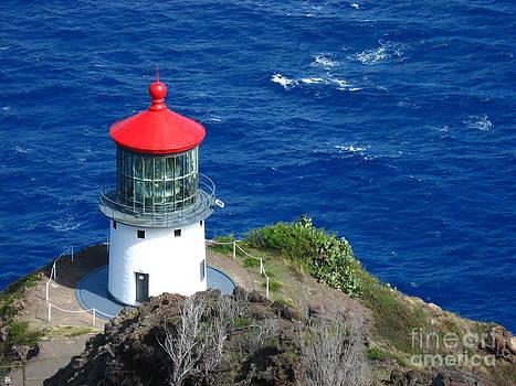 Christine Stack - Makapuu Lighthouse