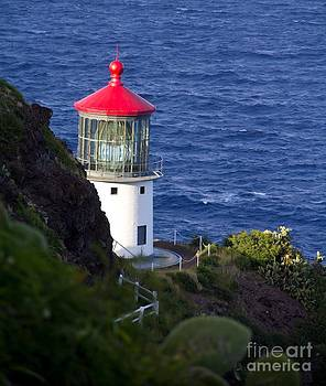 Makapuu Lighthouse by Kim Quintano