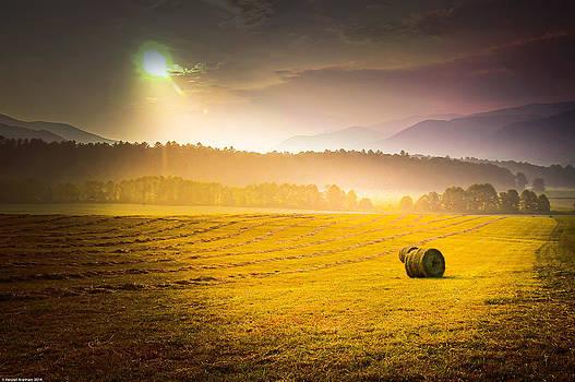 Randall Branham - Make Hay while the Sunshines