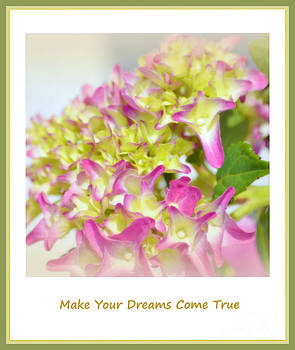 Susanne Van Hulst - Make your dreams come true