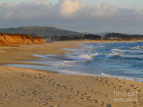 Making Tracks to Half Moon Bay by Avis  Noelle