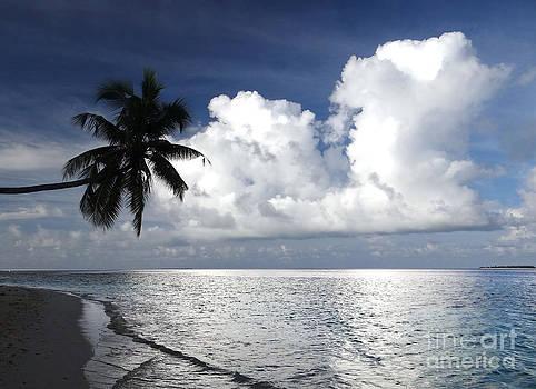 Maldives 01 by Giorgio Darrigo
