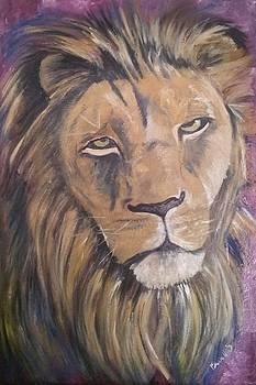Isabella F Abbie Shores - Male Lion