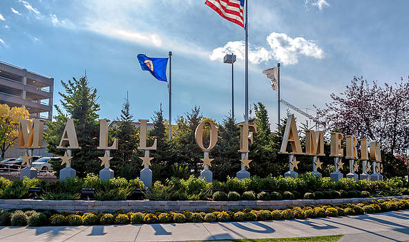 Mall of America by Lonnie Paulson