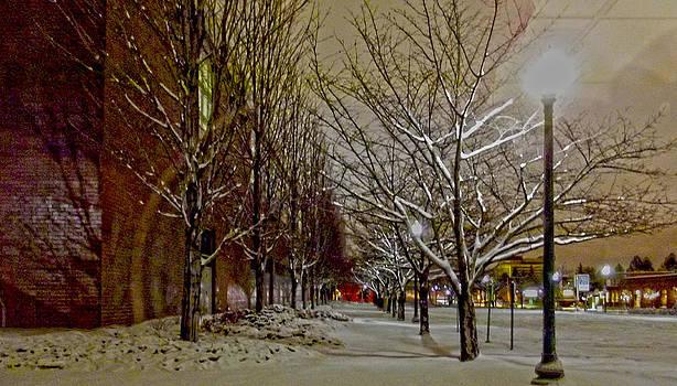 Mallon Walkway by Dan Quam