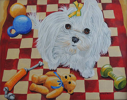 Maltese with toys by Laura Bolle