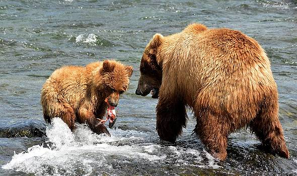 Patricia Twardzik - Mama and Baby Grizzly Bear at the Falls