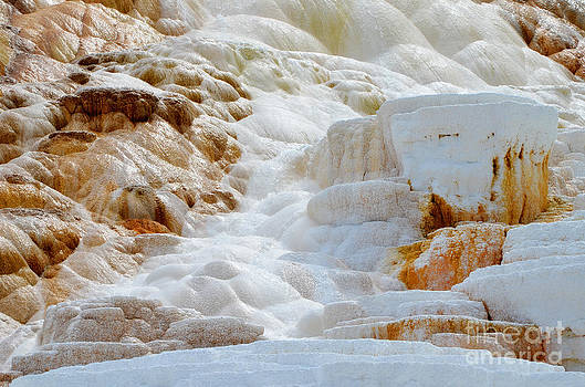 Rachel Barrett - Mammoth Hot Springs Up Close