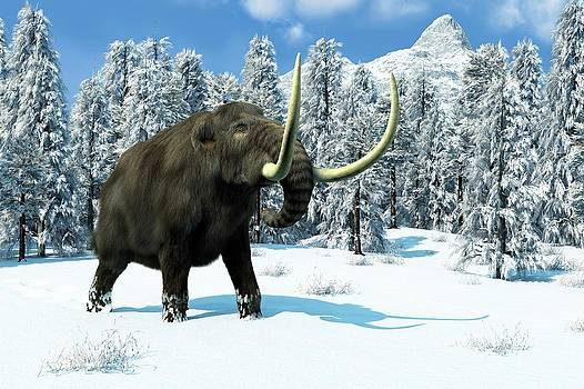Mammoth by Roger Harris