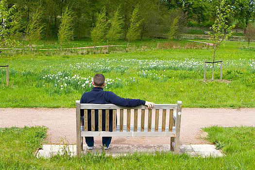 Fizzy Image - man sitting on a bench in a countryside scene