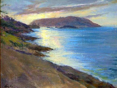 Manana Sunset by Mark Hayden