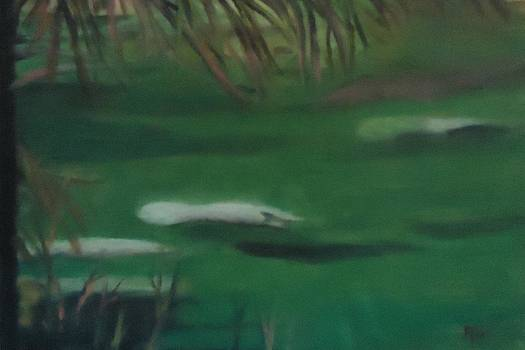 Manatee's Winter Home by Betty Pimm