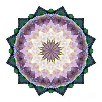 Mandala - Hagi Healing Layers by Kathi Shotwell
