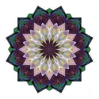 Kathi Shotwell - Mandala - Hagi Rich Reds