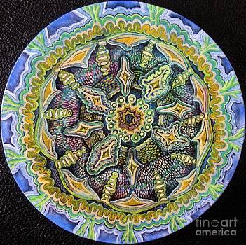 Mandala  by Sonja Gartner