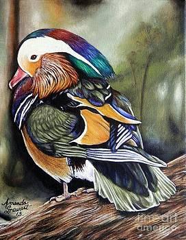 Mandarin Duck by Amanda Hukill