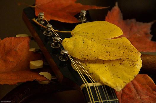 Mick Anderson - Mandolin Autumn 6