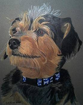 Mandy - Terrier Mix Commission by Anita Putman