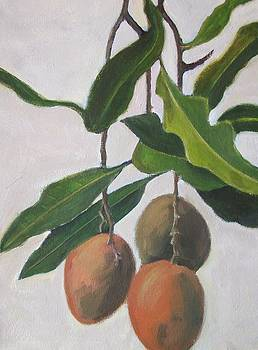 Mangoes by Mary Adam