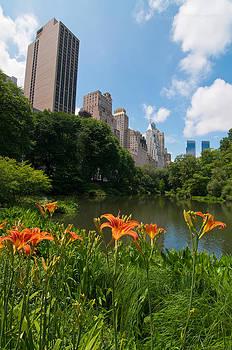 Manhattan In June by Tone Garot